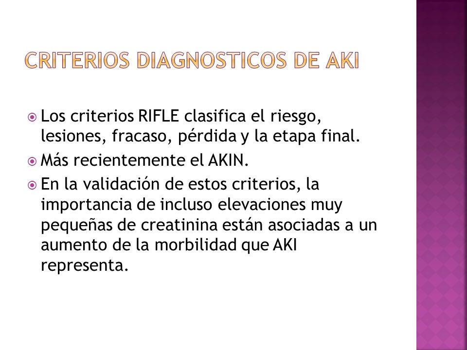Los criterios RIFLE clasifica el riesgo, lesiones, fracaso, pérdida y la etapa final. Más recientemente el AKIN. En la validación de estos criterios,