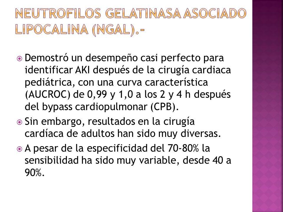 NAG aumento sus niveles dentro de las 6 h de la cirugía cardiaca pediátrica, quedando elevada a través de 48 h.