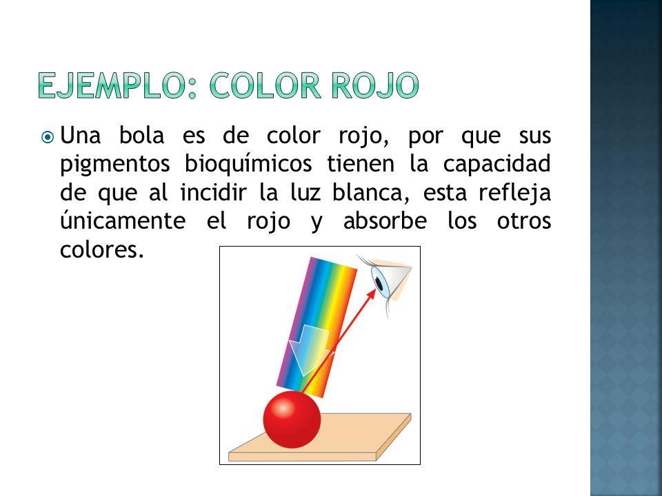 Una bola es de color rojo, por que sus pigmentos bioquímicos tienen la capacidad de que al incidir la luz blanca, esta refleja únicamente el rojo y ab