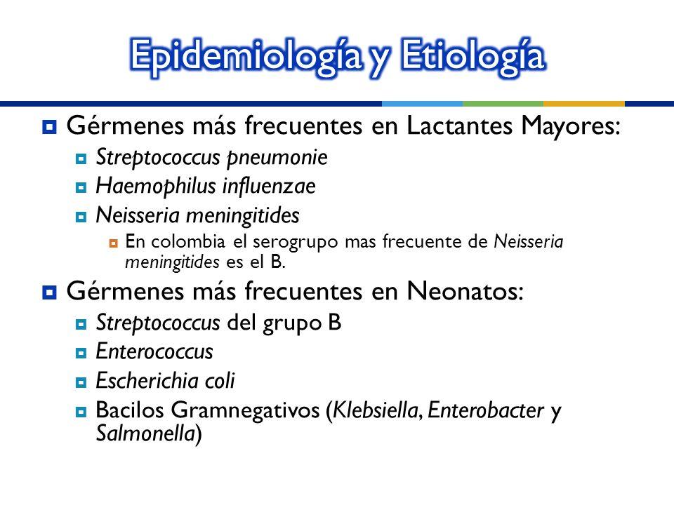 Gérmenes más frecuentes en Lactantes Mayores: Streptococcus pneumonie Haemophilus influenzae Neisseria meningitides En colombia el serogrupo mas frecu