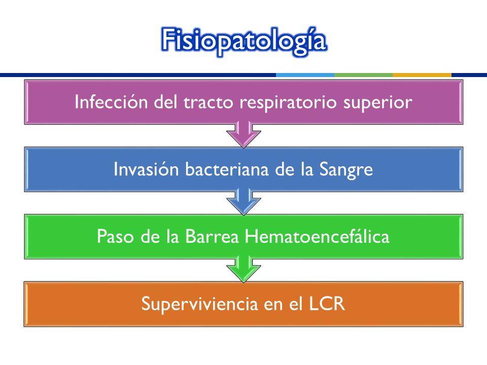 Superviviencia en el LCR Paso de la Barrea Hematoencefálica Invasión bacteriana de la Sangre Infección del tracto respiratorio superior