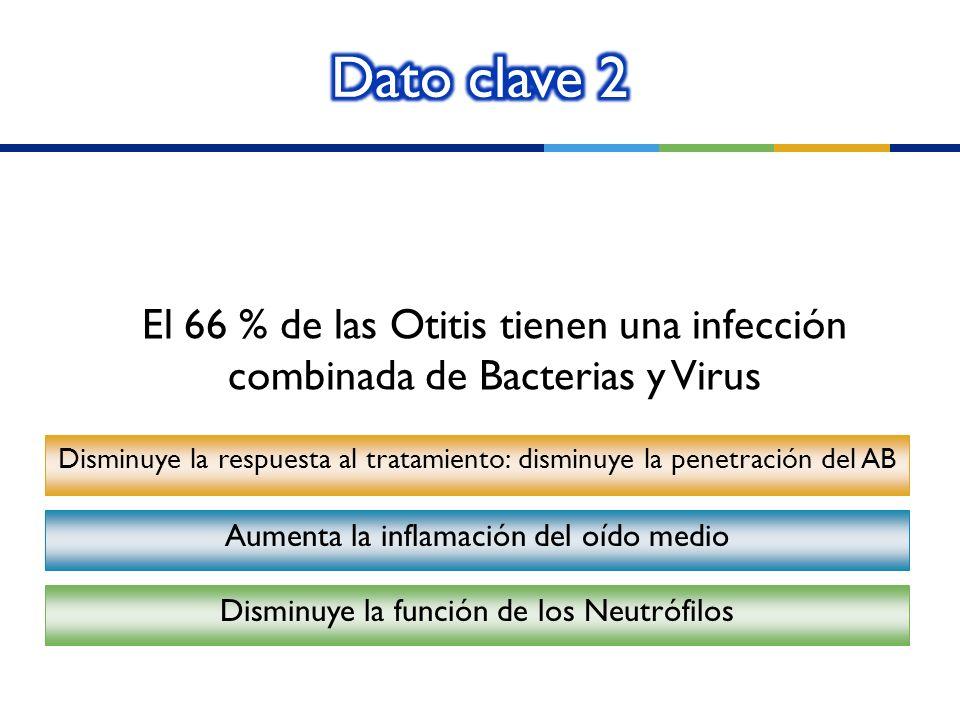 El 66 % de las Otitis tienen una infección combinada de Bacterias y Virus Disminuye la respuesta al tratamiento: disminuye la penetración del AB Aumen