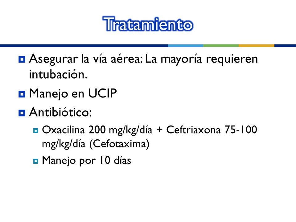 Asegurar la vía aérea: La mayoría requieren intubación. Manejo en UCIP Antibiótico: Oxacilina 200 mg/kg/día + Ceftriaxona 75-100 mg/kg/día (Cefotaxima