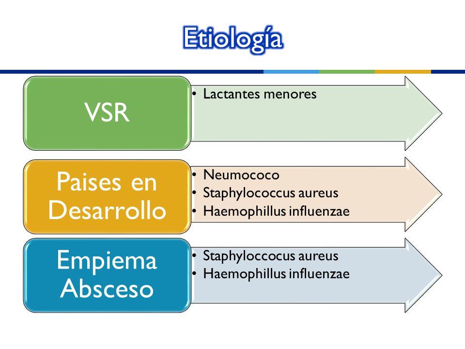 Lactantes menores VSR Neumococo Staphylococcus aureus Haemophillus influenzae Paises en Desarrollo Staphyloccocus aureus Haemophillus influenzae Empie