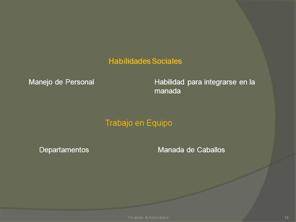 Competencias en el mismo segmento de mercado Empresa del mismo giroCentros ecuestres de la misma disciplina Yrivarren & Asociados13 Competencia Intern