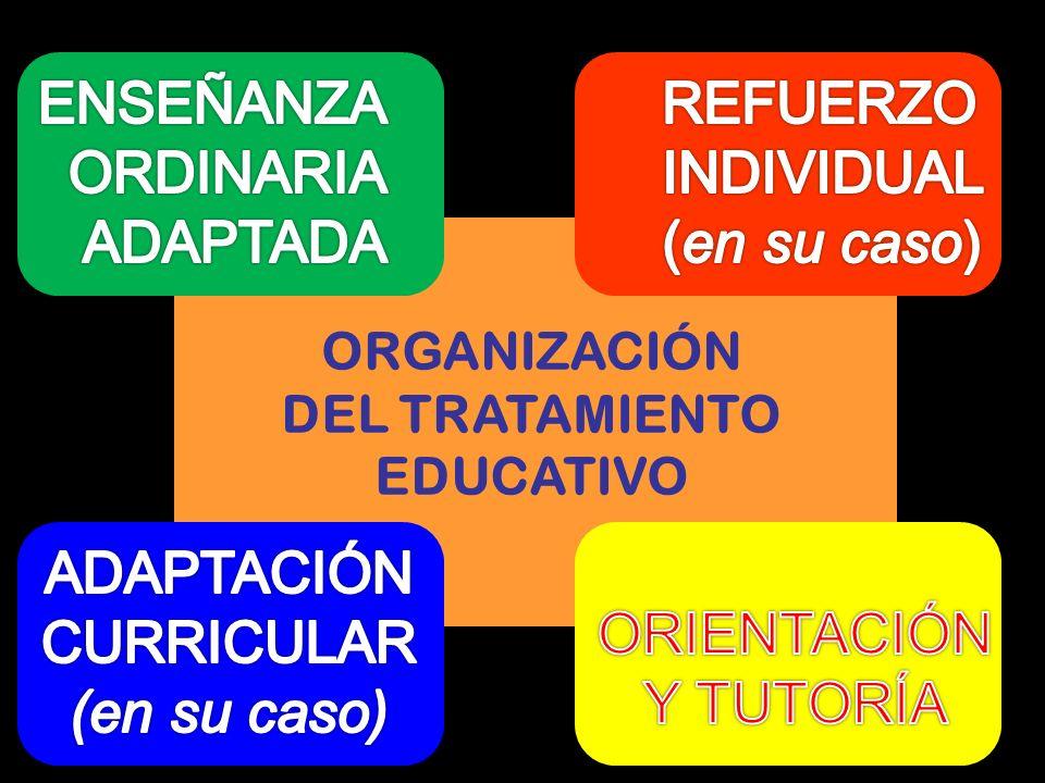 ORGANIZACIÓN DEL TRATAMIENTO EDUCATIVO