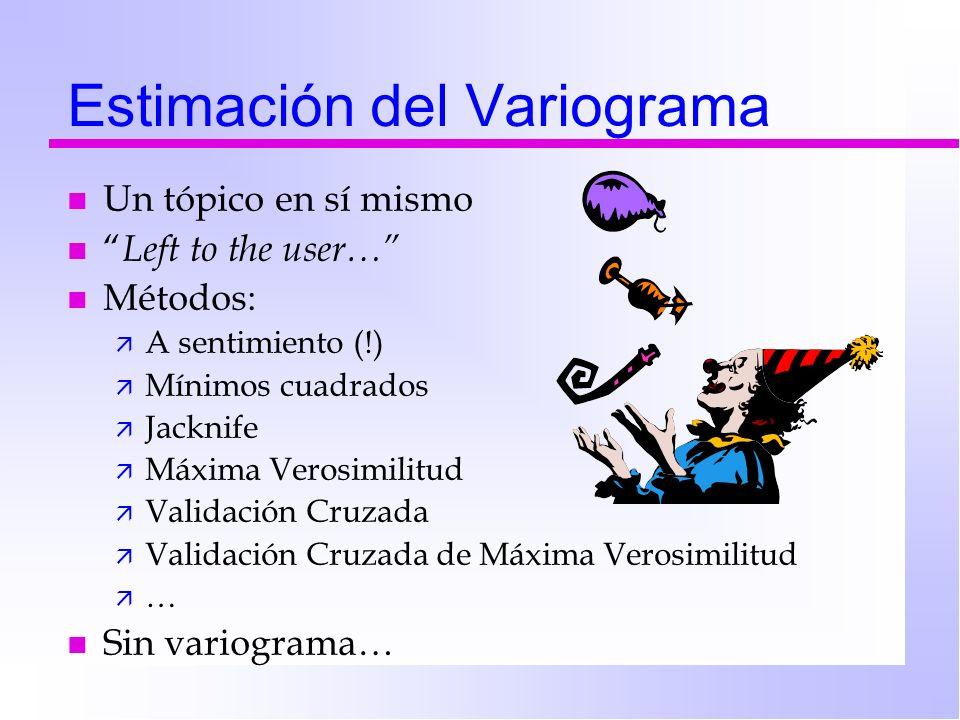 Estimación del Variograma n Un tópico en sí mismo n Left to the user… n Métodos: ä A sentimiento (!) ä Mínimos cuadrados ä Jacknife ä Máxima Verosimil