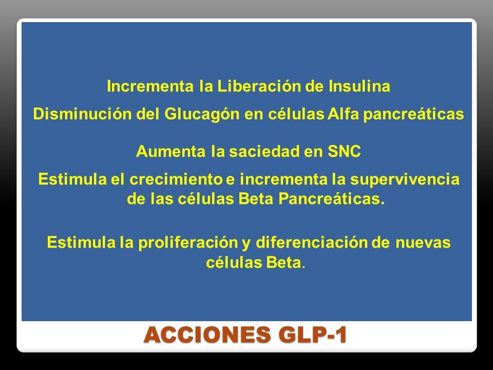 ACCIONES GLP-1 Incrementa la Liberación de Insulina Disminución del Glucagón en células Alfa pancreáticas Aumenta la saciedad en SNC Estimula el creci