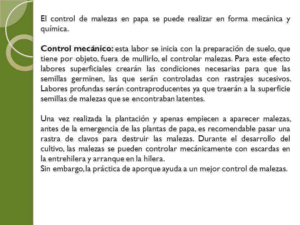El control de malezas en papa se puede realizar en forma mecánica y química. Control mecánico: esta labor se inicia con la preparación de suelo, que t