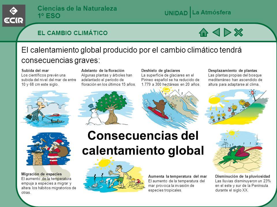 Ciencias de la Naturaleza 1º ESO EL CAMBIO CLIMÁTICO La Atmósfera UNIDAD El calentamiento global producido por el cambio climático tendrá consecuencia