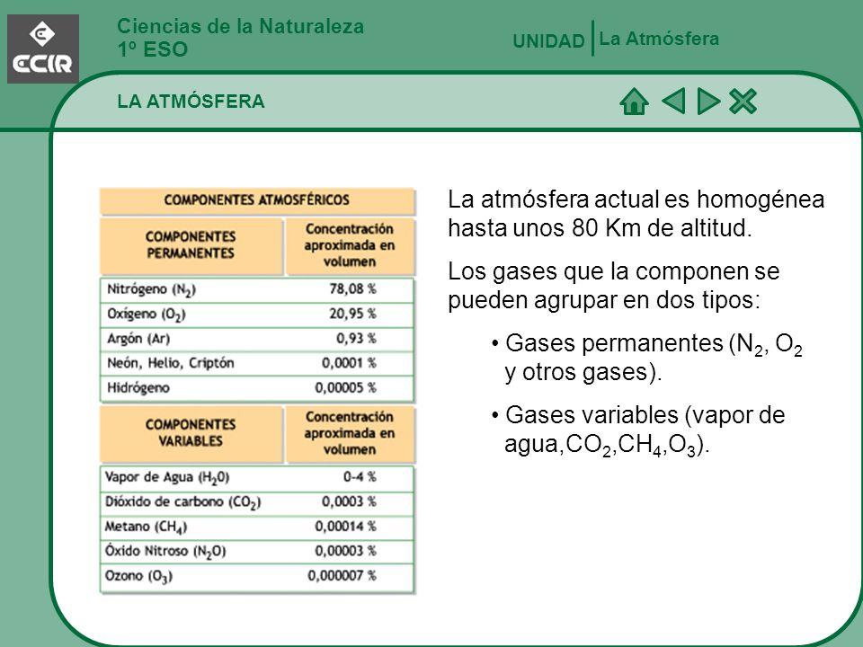 Ciencias de la Naturaleza 1º ESO LA ATMÓSFERA UNIDAD La Atmósfera La atmósfera actual es homogénea hasta unos 80 Km de altitud. Los gases que la compo