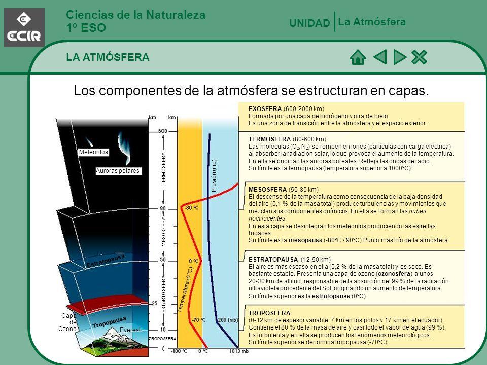 Ciencias de la Naturaleza 1º ESO FENÓMENOS ATMOSFÉRICOS La Atmósfera UNIDAD En la troposfera, el aire está en movimiento.