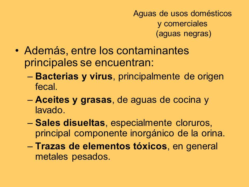 Aguas de usos domésticos y comerciales (aguas negras) Además, entre los contaminantes principales se encuentran: –Bacterias y virus, principalmente de