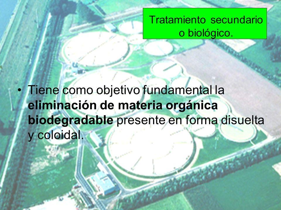 Tratamiento secundario o biológico. Tiene como objetivo fundamental la eliminación de materia orgánica biodegradable presente en forma disuelta y colo