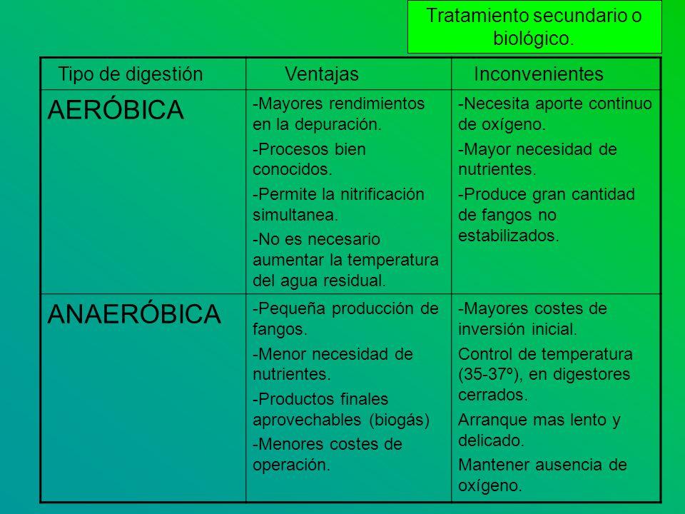 Tipo de digestión Ventajas Inconvenientes AERÓBICA -Mayores rendimientos en la depuración. -Procesos bien conocidos. -Permite la nitrificación simulta