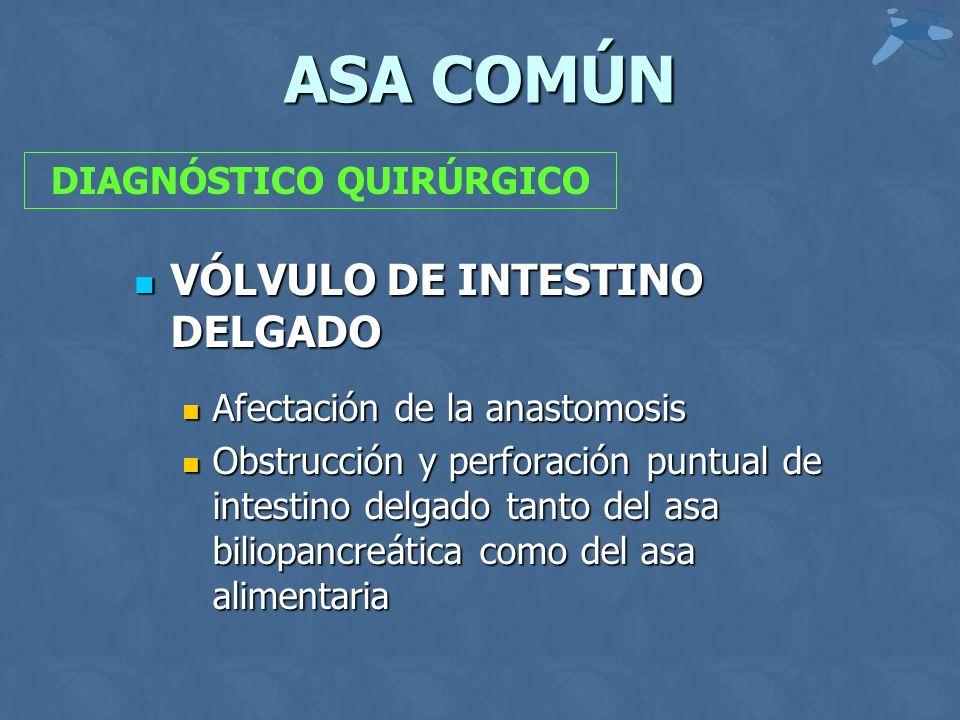 ASA COMÚN VÓLVULO DE INTESTINO DELGADO VÓLVULO DE INTESTINO DELGADO Afectación de la anastomosis Afectación de la anastomosis Obstrucción y perforación puntual de intestino delgado tanto del asa biliopancreática como del asa alimentaria Obstrucción y perforación puntual de intestino delgado tanto del asa biliopancreática como del asa alimentaria DIAGNÓSTICO QUIRÚRGICO