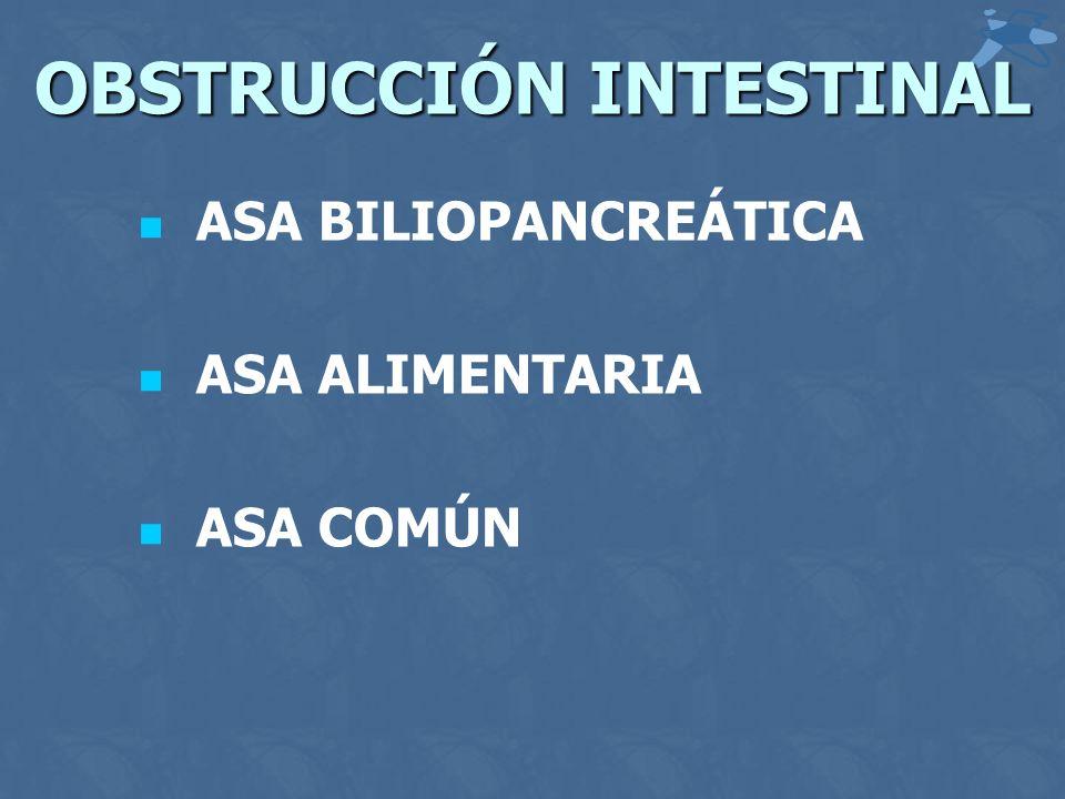 OBSTRUCCIÓN INTESTINAL ASA BILIOPANCREÁTICA ASA ALIMENTARIA ASA COMÚN