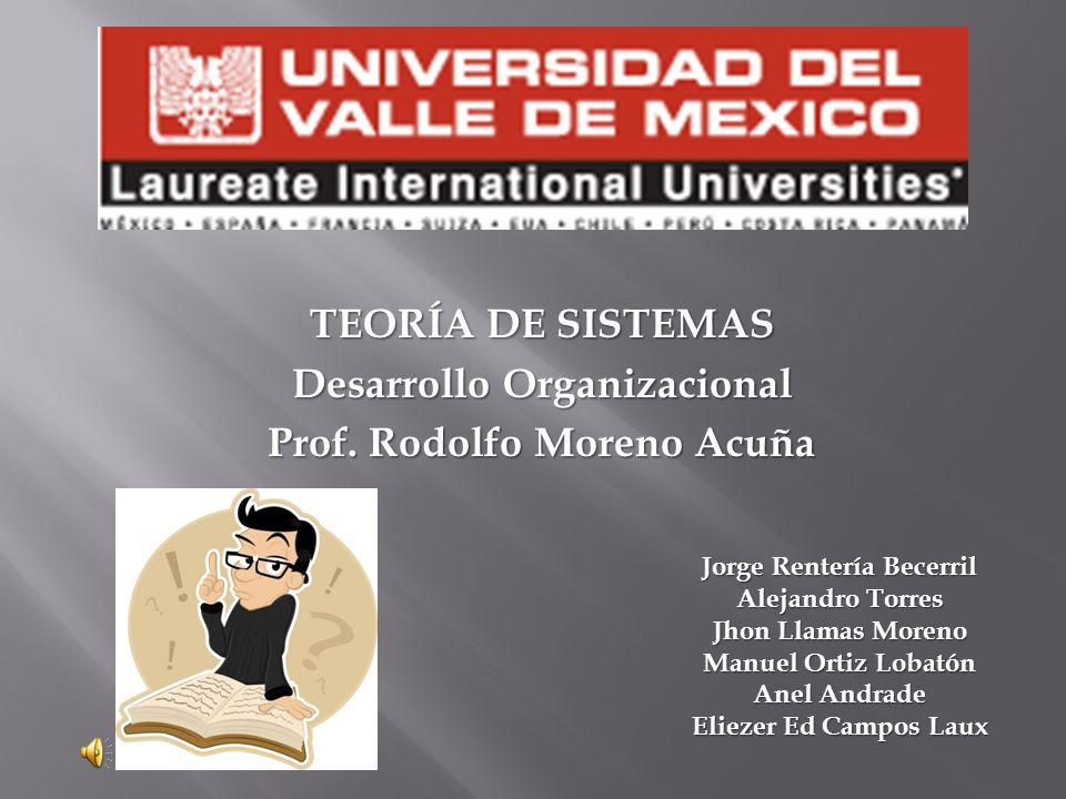 TEORÍA DE SISTEMAS Desarrollo Organizacional Prof.