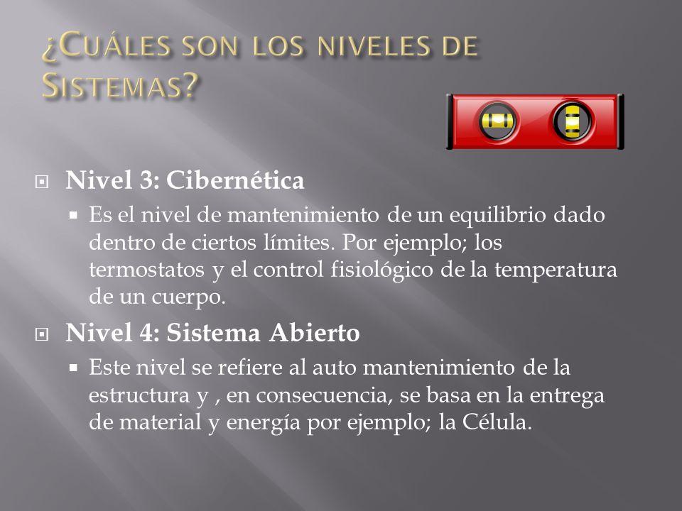 Los sistemas pueden ordenarse de acuerdo a varios criterios. Nivel 1: Estructuras Es un nivel de las Estructuras estáticas, estas se pueden describir