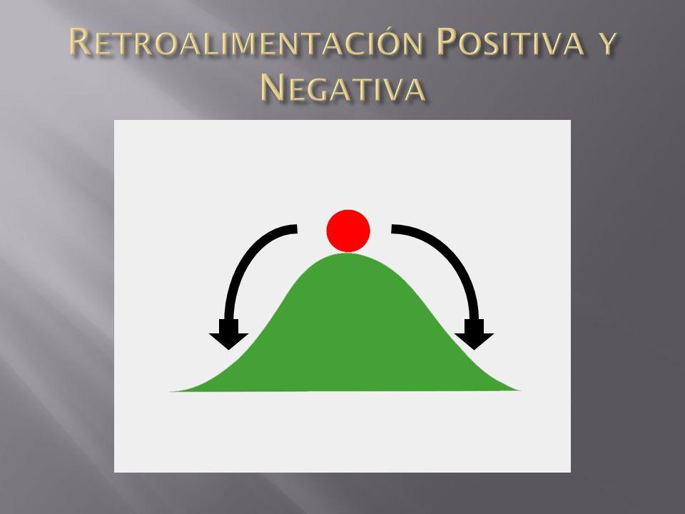 En los sistemas, la retroalimentación es la que define el equilibrio que puede darse. Por ejemplo con la retroalimentación positiva, difícilmente se l