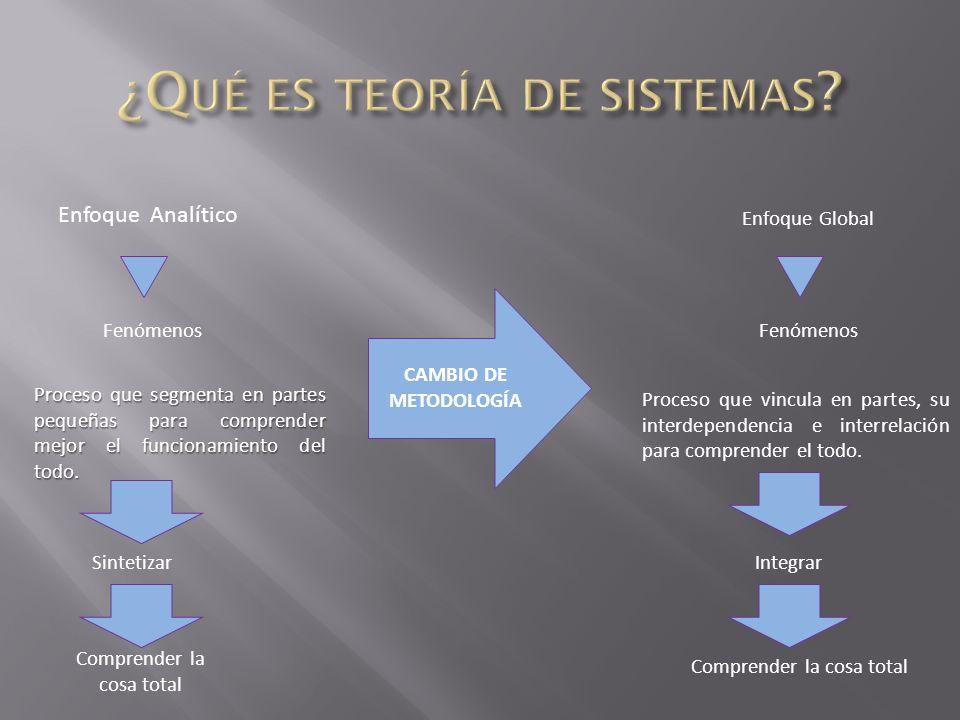 Enfoque Analítico Proceso que segmenta en partes pequeñas para comprender mejor el funcionamiento del todo.