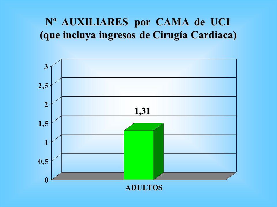 Nº AUXILIARES por CAMA de UCI Nº AUXILIARES por CAMA de UCI (que incluya ingresos de Cirugía Cardiaca) 1,31 ADULTOS
