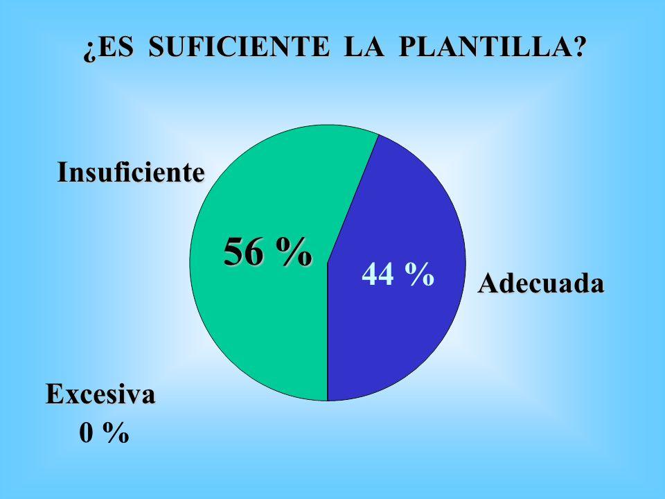 ¿ES SUFICIENTE LA PLANTILLA? Adecuada 56 % 44 % Excesiva Insuficiente 0 %