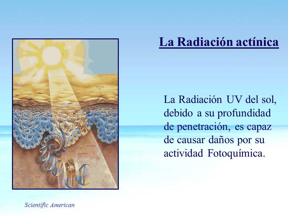 La Radiación UV del sol, debido a su profundidad de penetración, es capaz de causar daños por su actividad Fotoquímica. Scientific American La Radiaci
