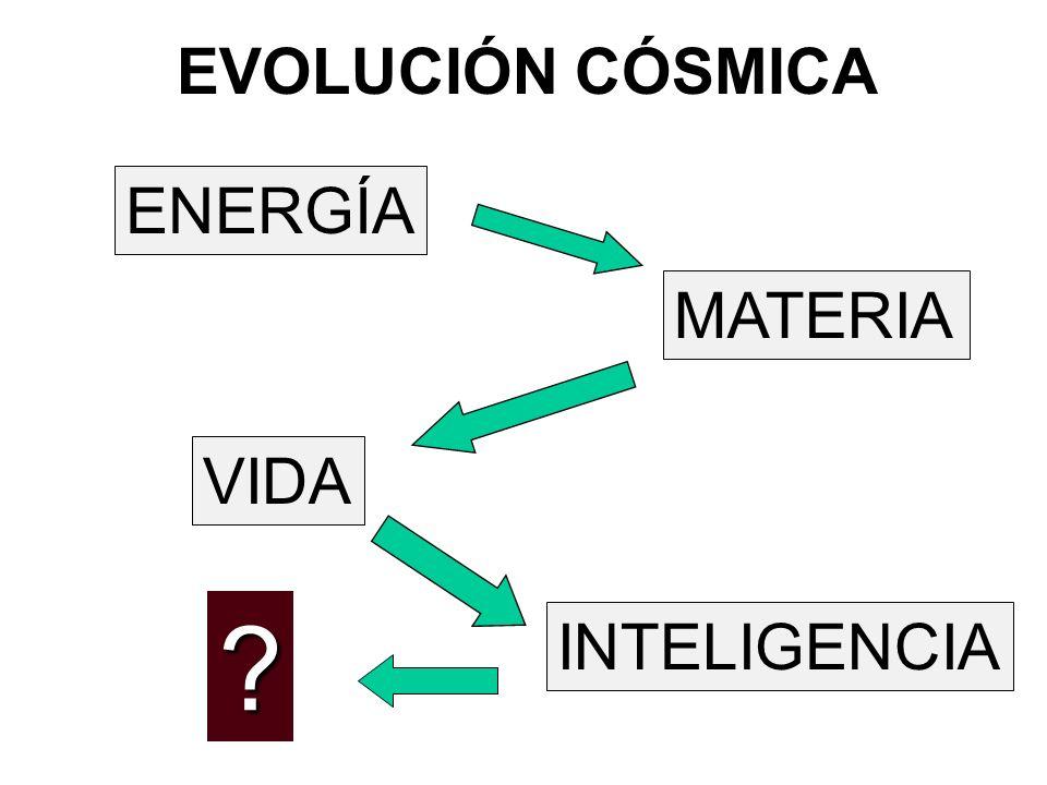 EVOLUCIÓN CÓSMICA ENERGÍA VIDA MATERIA INTELIGENCIA ?