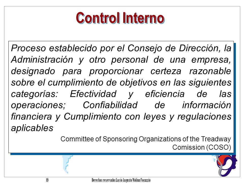 Derechos reservados Lucio Augusto Molina Focazzio 18 Control Interno Conjunto de procesos, funciones, actividades, subsistemas y personas que se encuentran agrupados o segregados conscientemente para asegurar el logro efectivo de metas y objetivos.