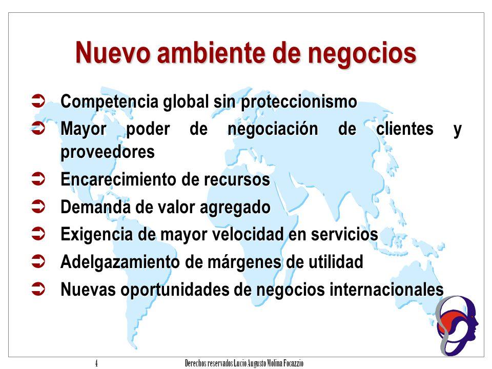 Derechos reservados Lucio Augusto Molina Focazzio 44 Los Auditores necesitan C OBI T Soportar ante la Gerencia la opinión sobre los controles internos.