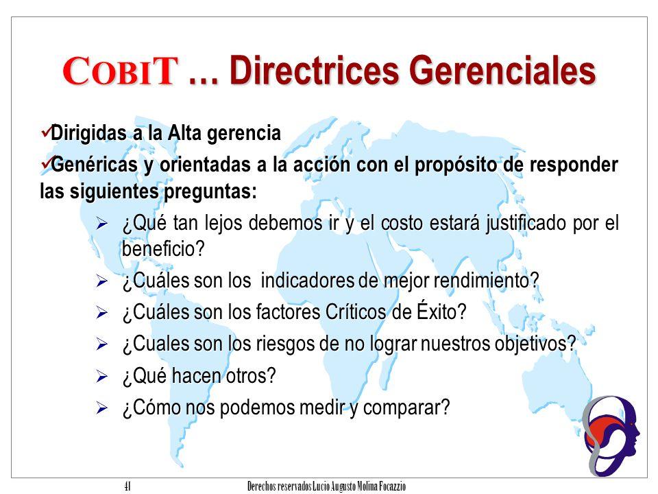 Derechos reservados Lucio Augusto Molina Focazzio 40 C OBI T … Guías de Auditoría Las guías de auditóría también incorporan el resumen ejecutivo y el marco referencial.