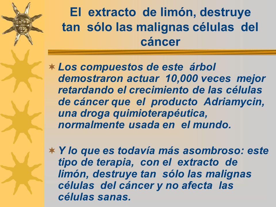 El extracto de limón, destruye tan sólo las malignas células del cáncer Los compuestos de este árbol demostraron actuar 10,000 veces mejor retardando