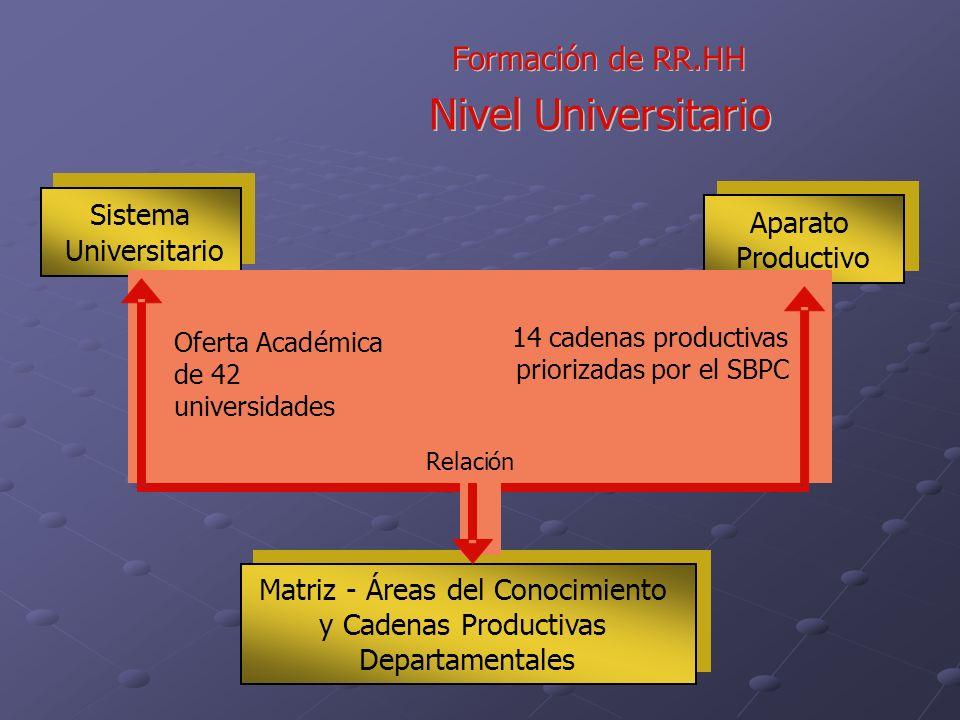 Formaci ó ó n de RR.HH Nivel Universitario Matriz-Áreas del Conocimiento y Cadenas Productivas Departamentales Matriz-Áreas del Conocimiento y Cadenas