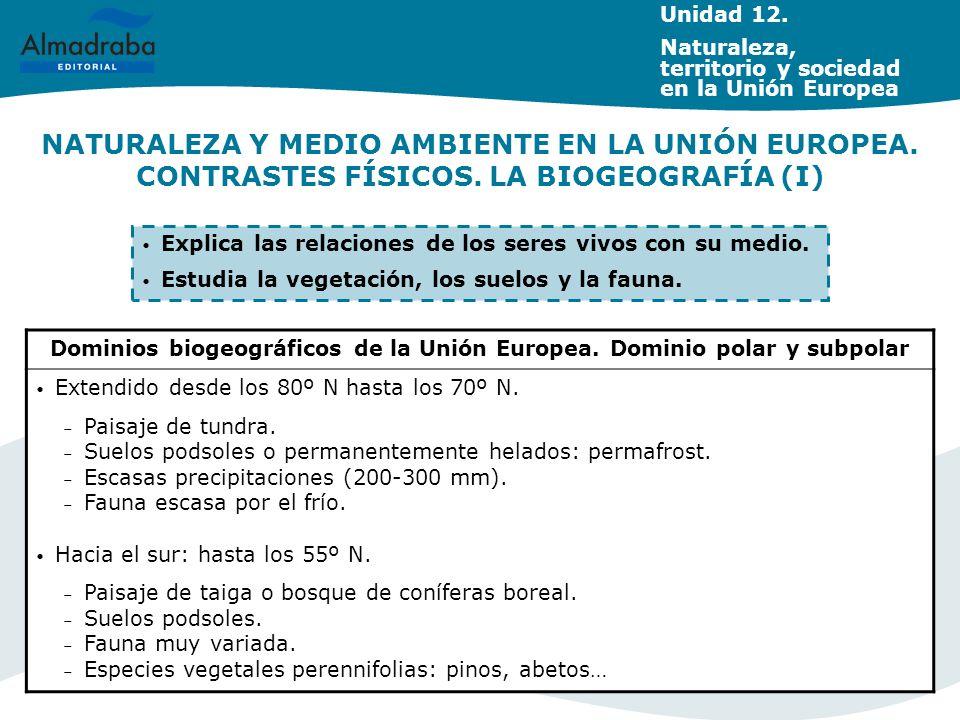 NATURALEZA Y MEDIO AMBIENTE EN LA UNIÓN EUROPEA. CONTRASTES FÍSICOS. LA BIOGEOGRAFÍA (I) Dominios biogeográficos de la Unión Europea. Dominio polar y