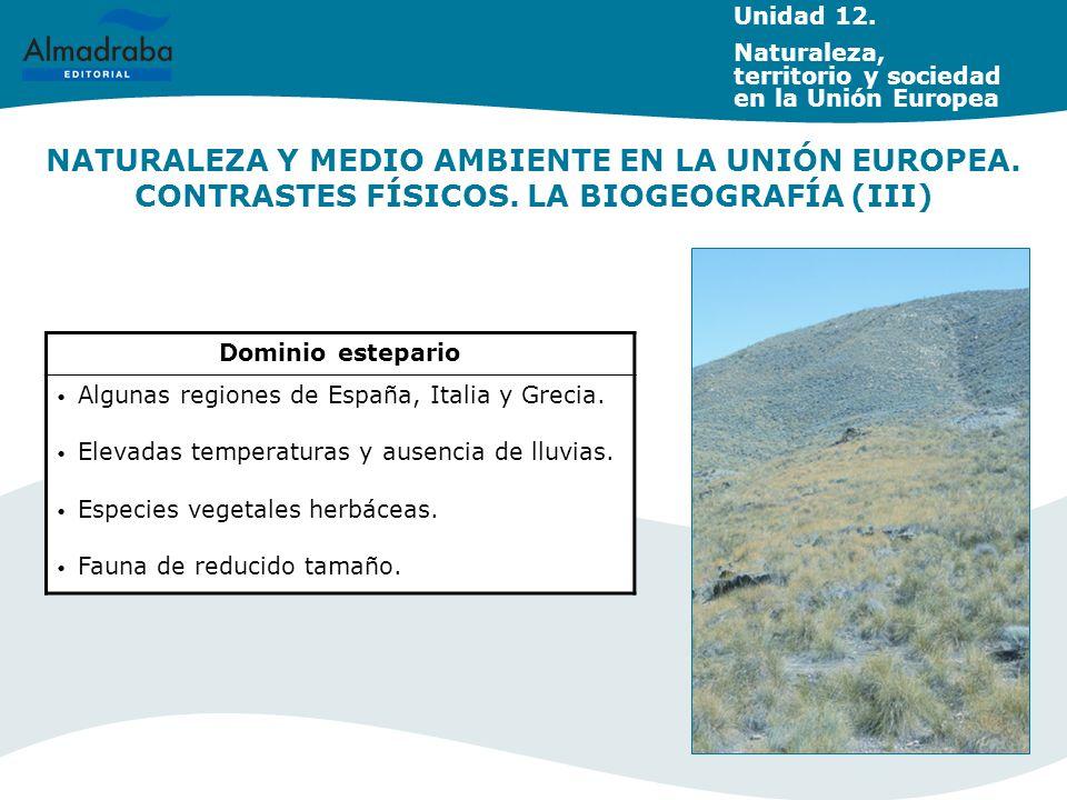 NATURALEZA Y MEDIO AMBIENTE EN LA UNIÓN EUROPEA. CONTRASTES FÍSICOS. LA BIOGEOGRAFÍA (III) Dominio estepario Algunas regiones de España, Italia y Grec