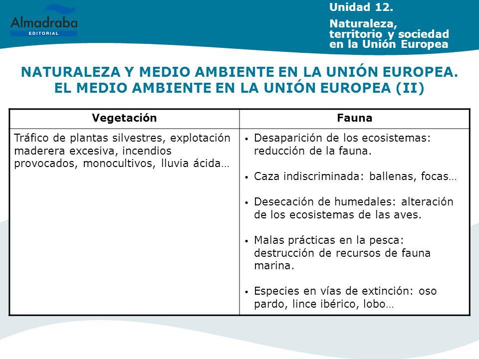 NATURALEZA Y MEDIO AMBIENTE EN LA UNIÓN EUROPEA. EL MEDIO AMBIENTE EN LA UNIÓN EUROPEA (II) Unidad 12. Naturaleza, territorio y sociedad en la Unión E