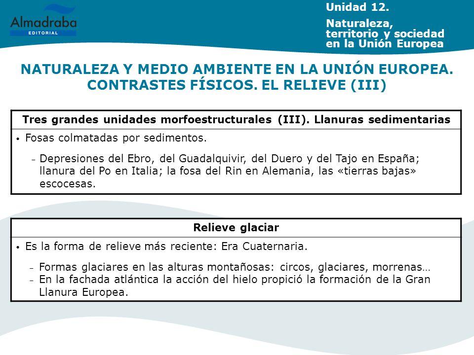 NATURALEZA Y MEDIO AMBIENTE EN LA UNIÓN EUROPEA. CONTRASTES FÍSICOS. EL RELIEVE (III) Tres grandes unidades morfoestructurales (III). Llanuras sedimen