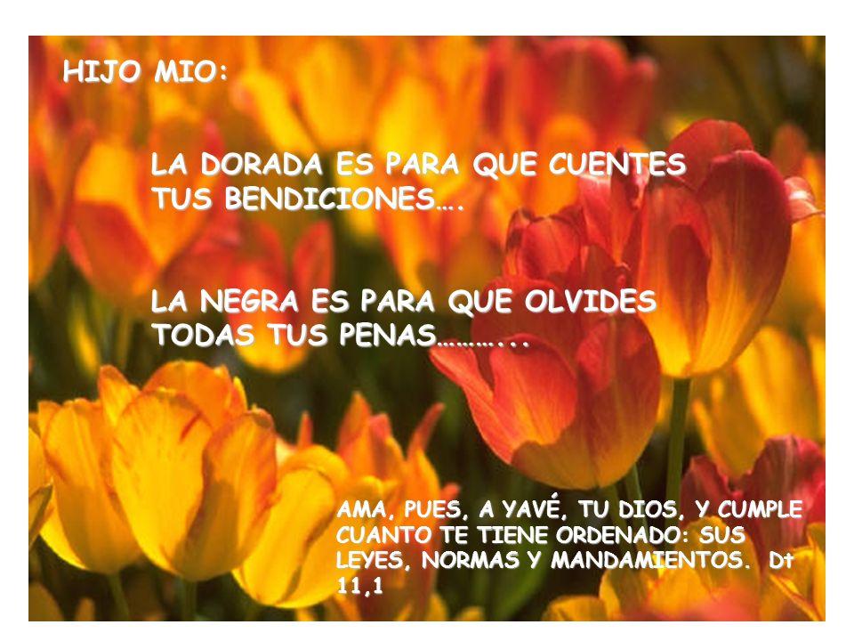EL ME SONRIO….