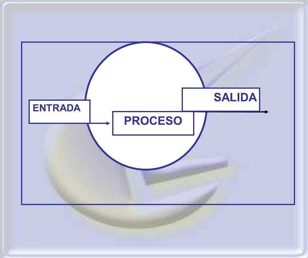 . ENTRADA SALIDA PROCESO