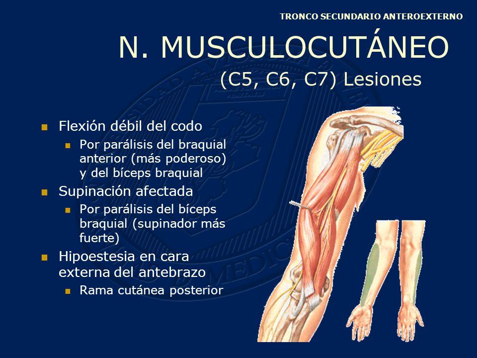 Sensitivo Brazo: NO Antebrazo: NO Mano Mitad interna palma y dorso de la mano Borde cubital Cara palmar y dorsal del anular y meñique TRONCO SECUNDARIO ANTEROINTERNO N.