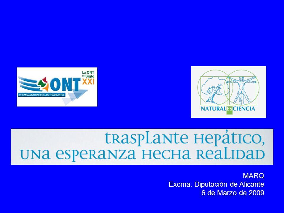 MARQ Excma. Diputación de Alicante 6 de Marzo de 2009