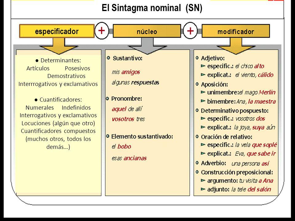 El Sintagma adjetival (SAdj) Cuantificadores (indican intensidad o grado): especificador