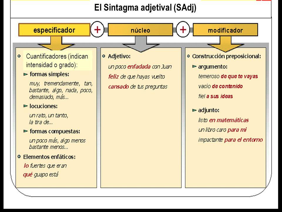 El Sintagma adverbial (SAdv) especificador / modificador Adverbios antepuestos que funcionan como modificadores :