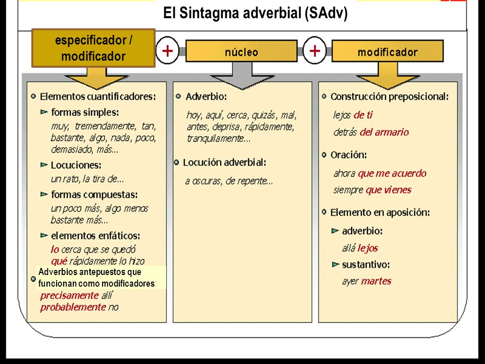 El Sintagma adverbial (SAdv) especificador / modificador Adverbios antepuestos que funcionan como modificadores :