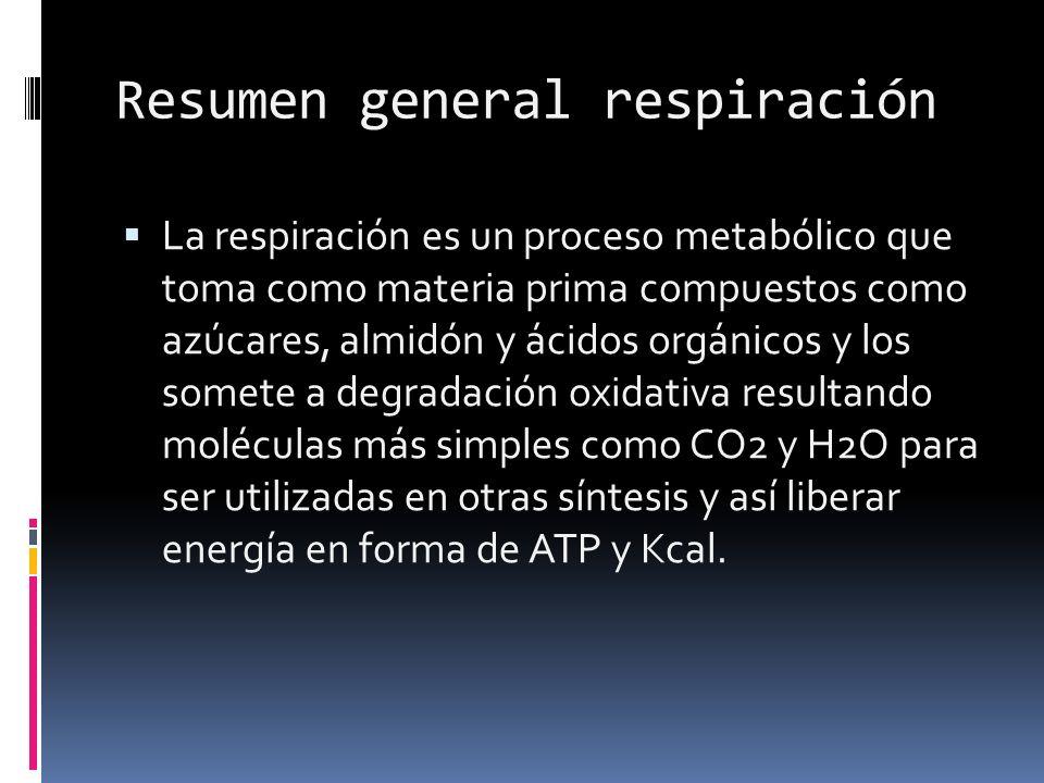 Resumen general respiración La respiración es un proceso metabólico que toma como materia prima compuestos como azúcares, almidón y ácidos orgánicos y los somete a degradación oxidativa resultando moléculas más simples como CO2 y H2O para ser utilizadas en otras síntesis y así liberar energía en forma de ATP y Kcal.