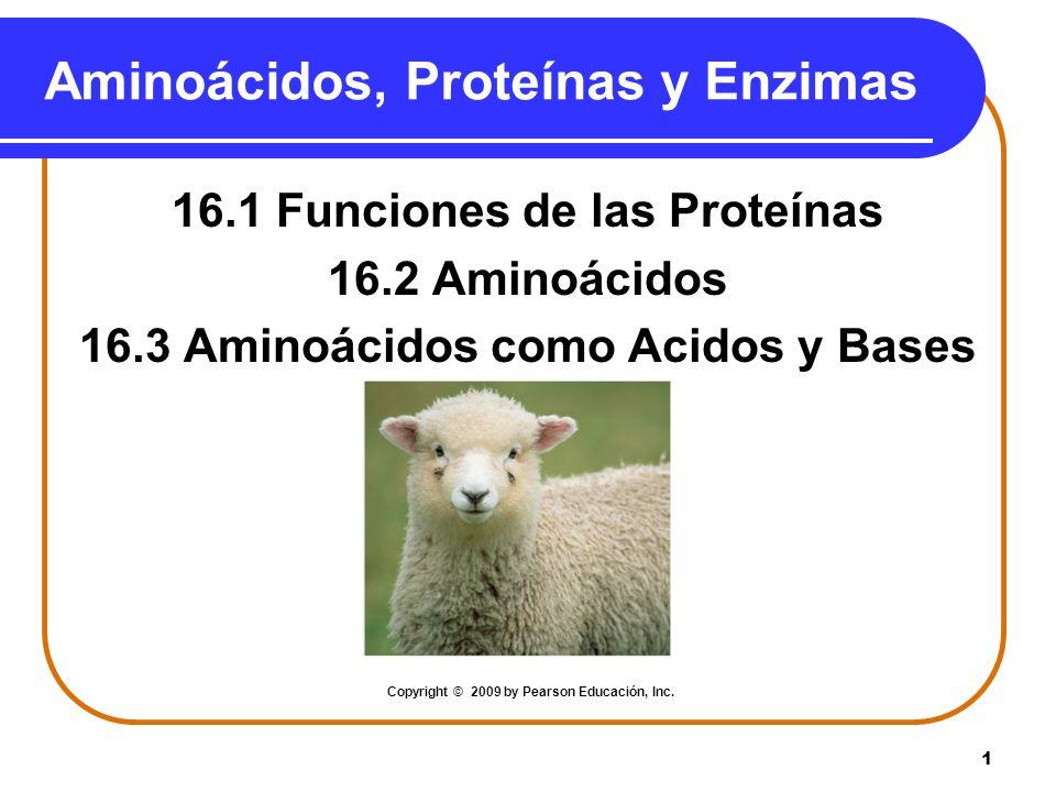 1 Aminoácidos, Proteínas y Enzimas 16.1 Funciones de las Proteínas 16.2 Aminoácidos 16.3 Aminoácidos como Acidos y Bases Copyright © 2009 by Pearson E