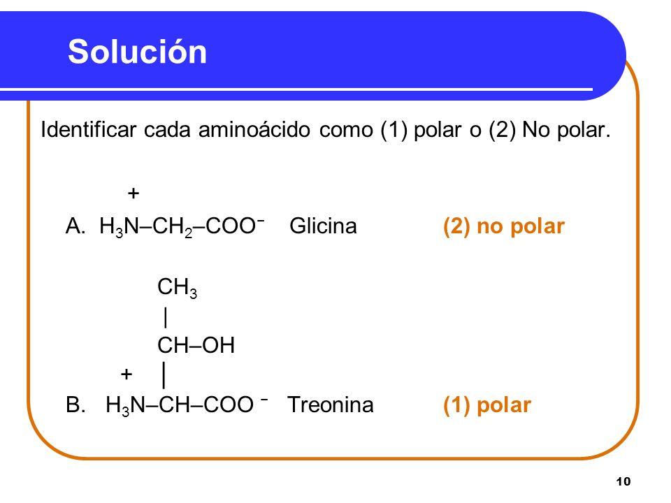 10 Solución Identificar cada aminoácido como (1) polar o (2) No polar. + A. H 3 N–CH 2 –COO Glicina (2) no polar CH 3 | CH–OH + B. H 3 N–CH–COO Treoni