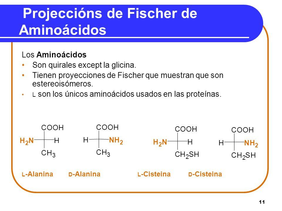 11 Projeccións de Fischer de Aminoácidos Los Aminoácidos Son quirales except la glicina. Tienen proyecciones de Fischer que muestran que son estereois