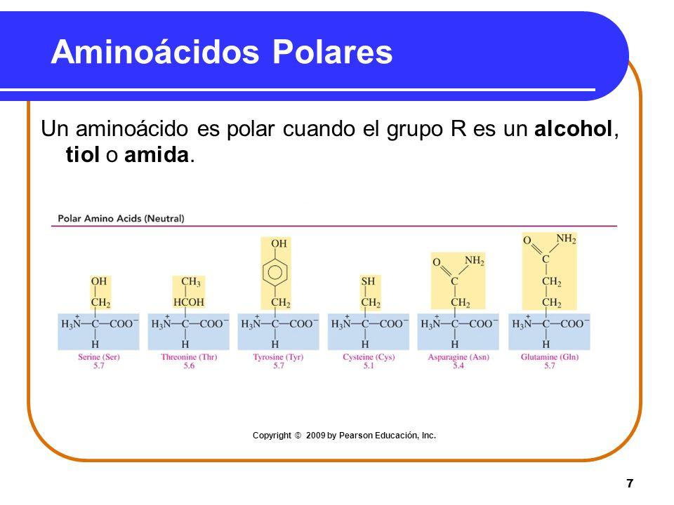 7 Aminoácidos Polares Un aminoácido es polar cuando el grupo R es un alcohol, tiol o amida. Copyright © 2009 by Pearson Educación, Inc.